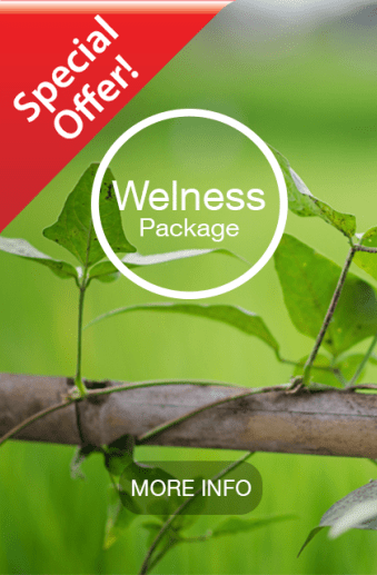package-welness-special-offer